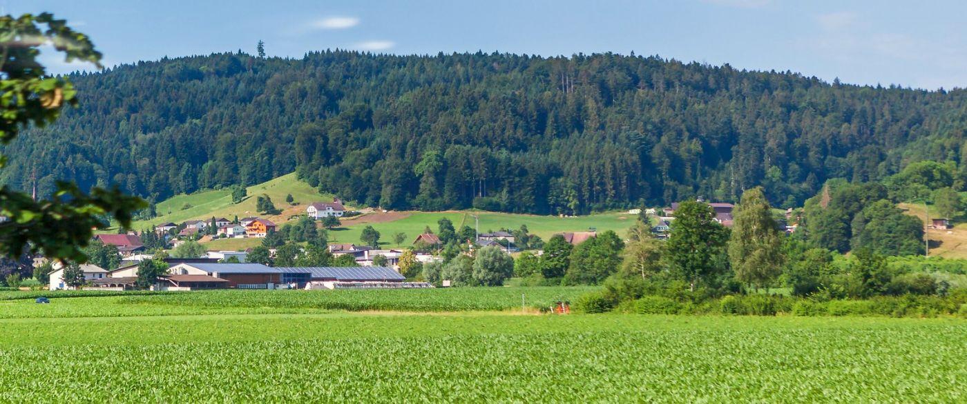 瑞士旅途,美丽的家园_图1-29