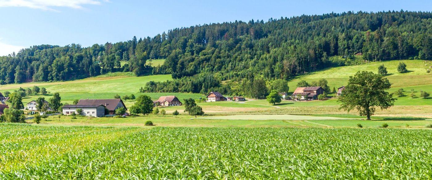 瑞士旅途,美丽的家园_图1-34