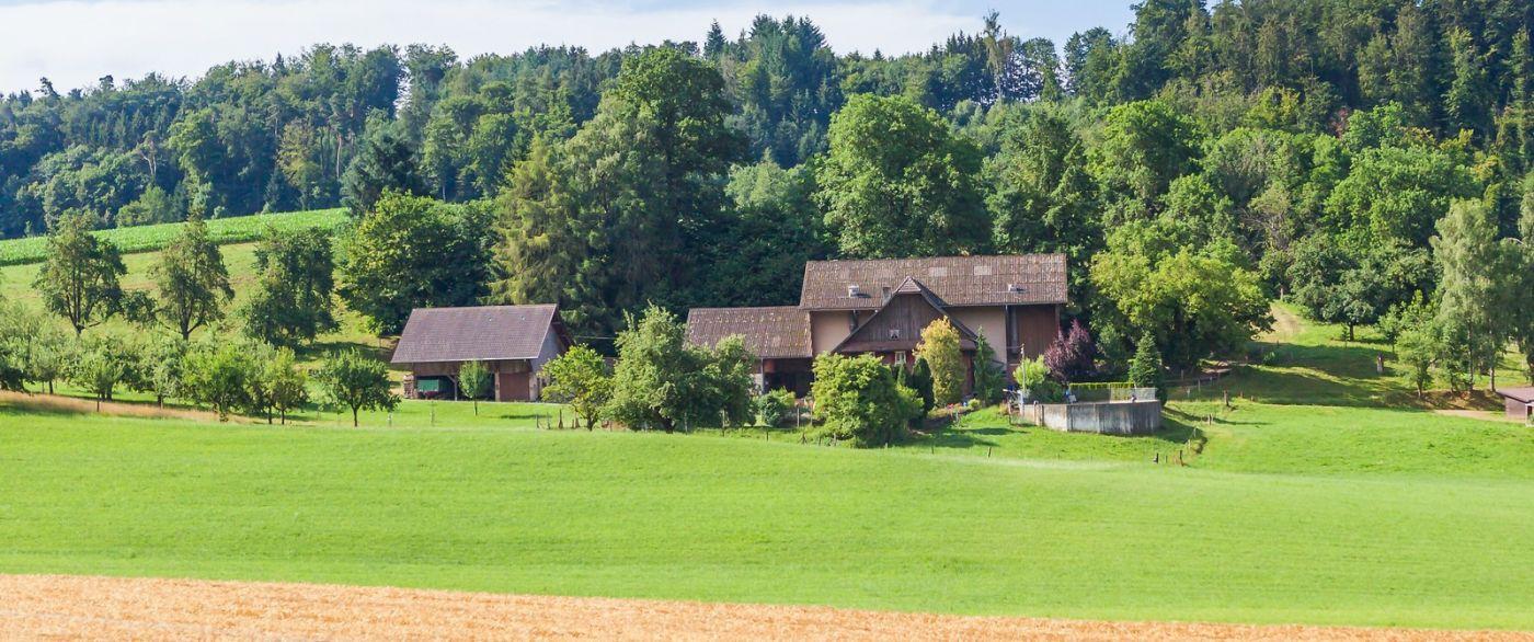 瑞士旅途,美丽的家园_图1-33