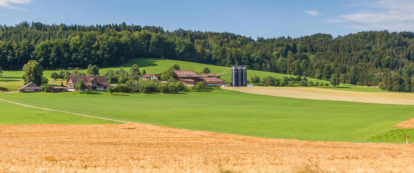 瑞士旅途,美丽的家园_图1-31