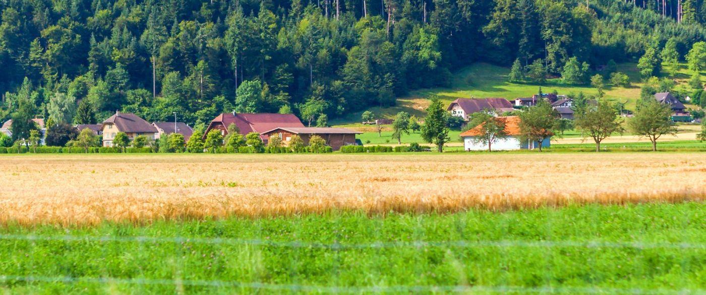 瑞士旅途,美丽的家园_图1-27