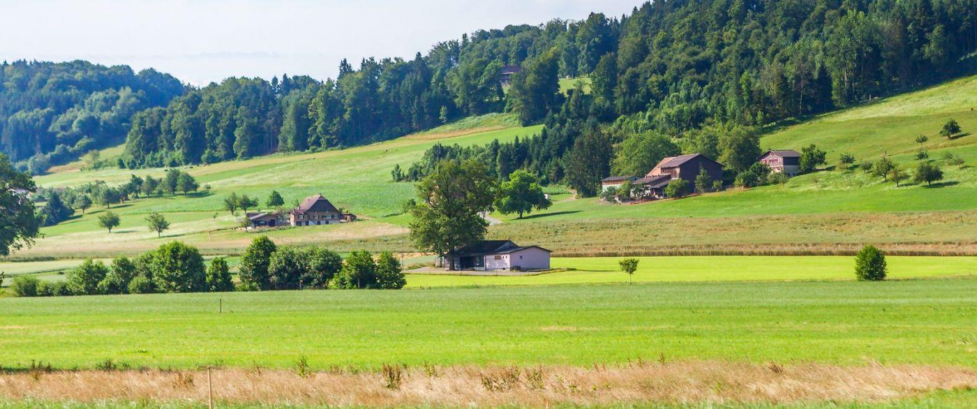 瑞士旅途,美丽的家园_图1-26