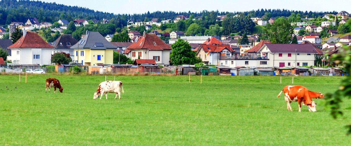 瑞士旅途,美丽的家园_图1-22