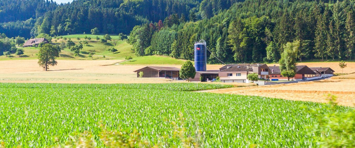 瑞士旅途,美丽的家园_图1-23