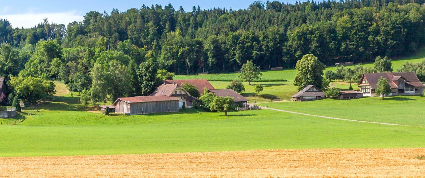 瑞士旅途,美丽的家园_图1-24