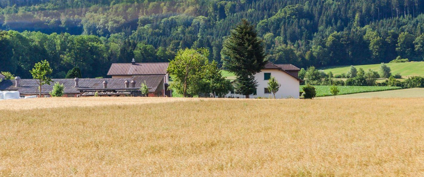 瑞士旅途,美丽的家园_图1-18
