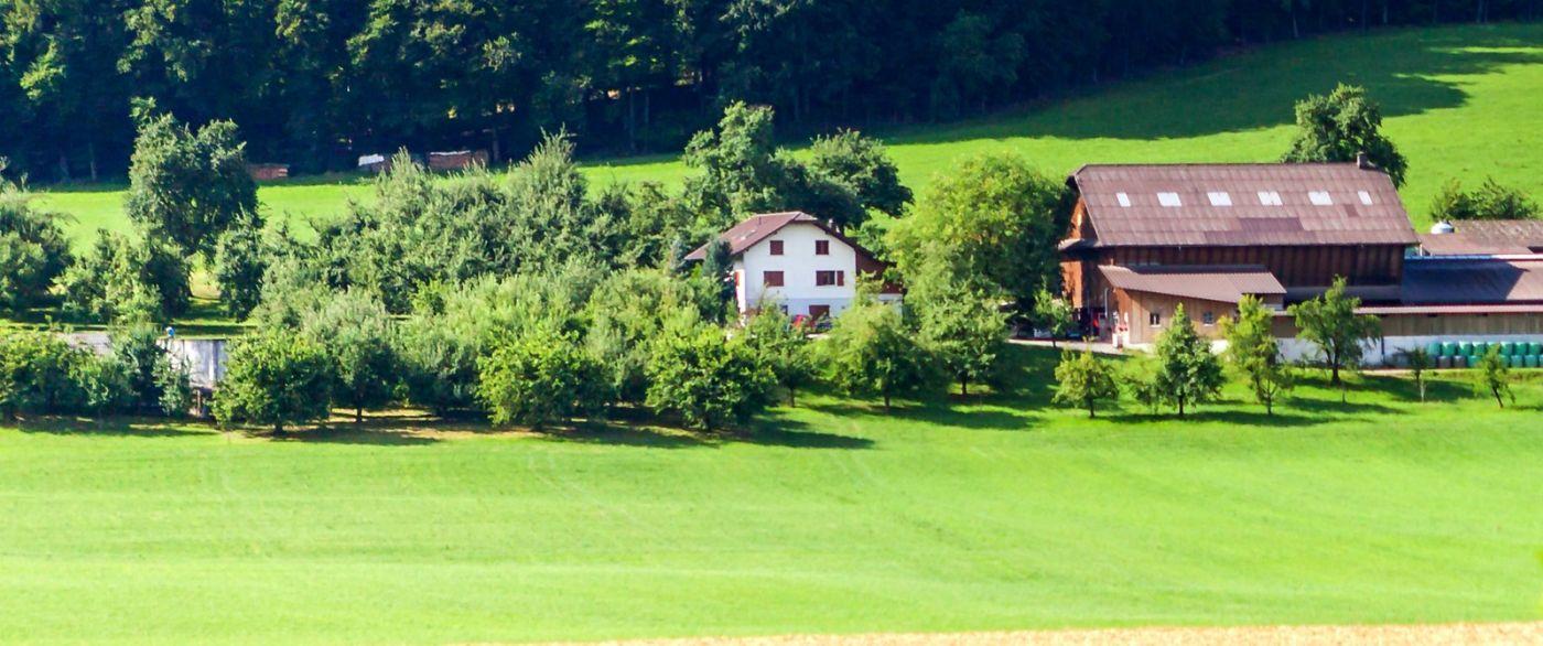 瑞士旅途,美丽的家园_图1-13