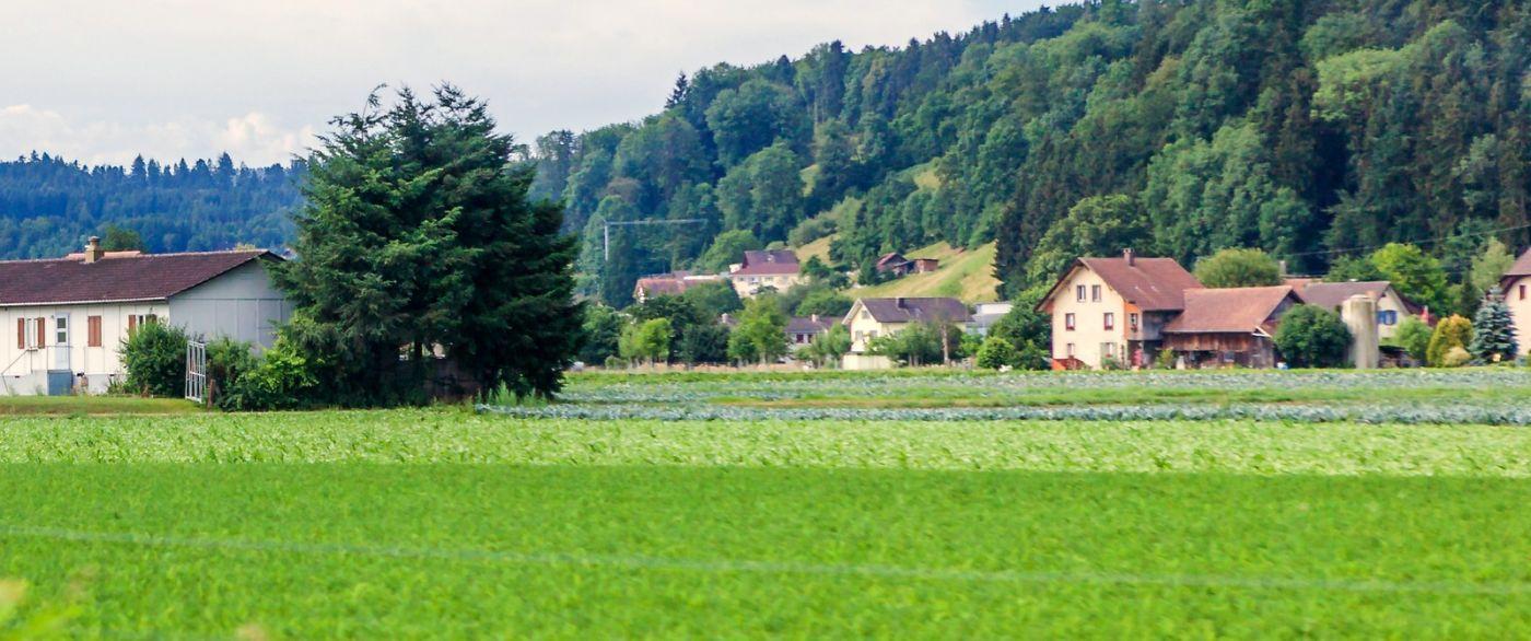瑞士旅途,美丽的家园_图1-15