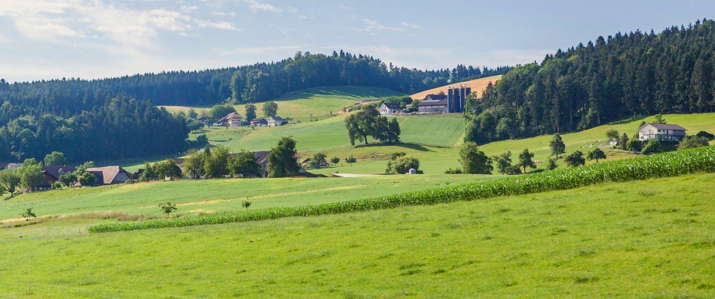 瑞士旅途,美丽的家园_图1-16