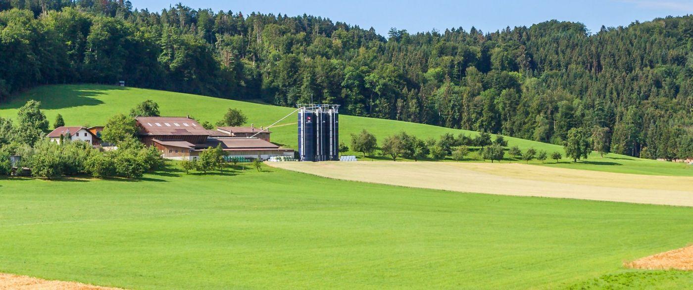 瑞士旅途,美丽的家园_图1-12