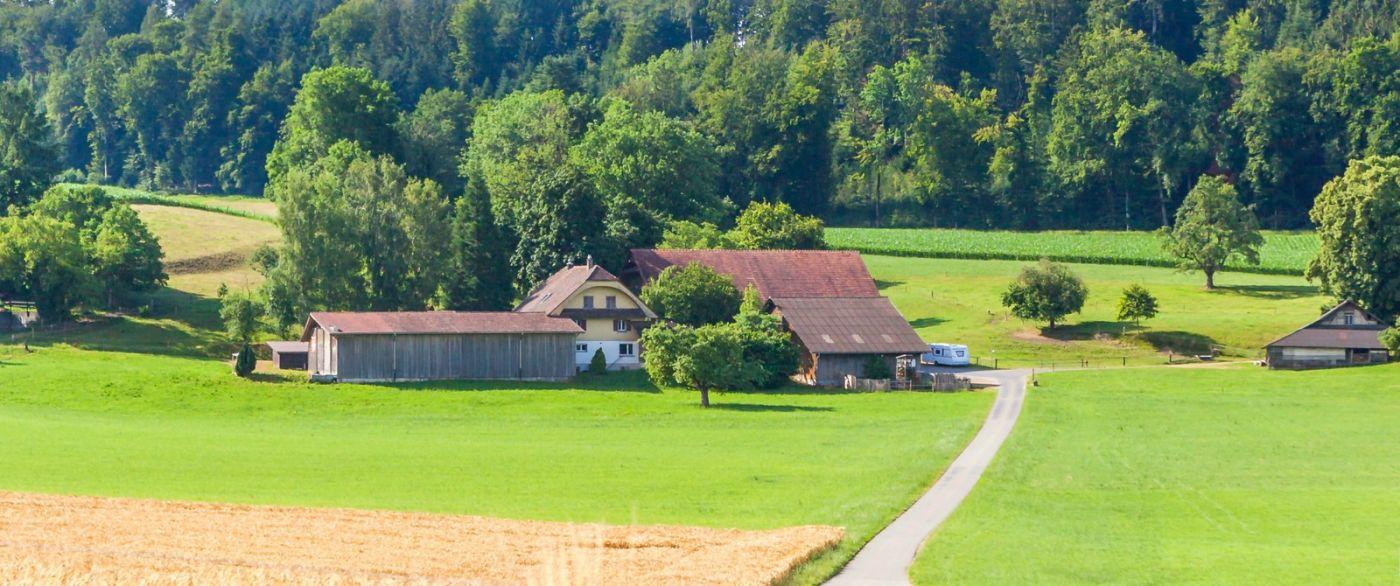 瑞士旅途,美丽的家园_图1-9