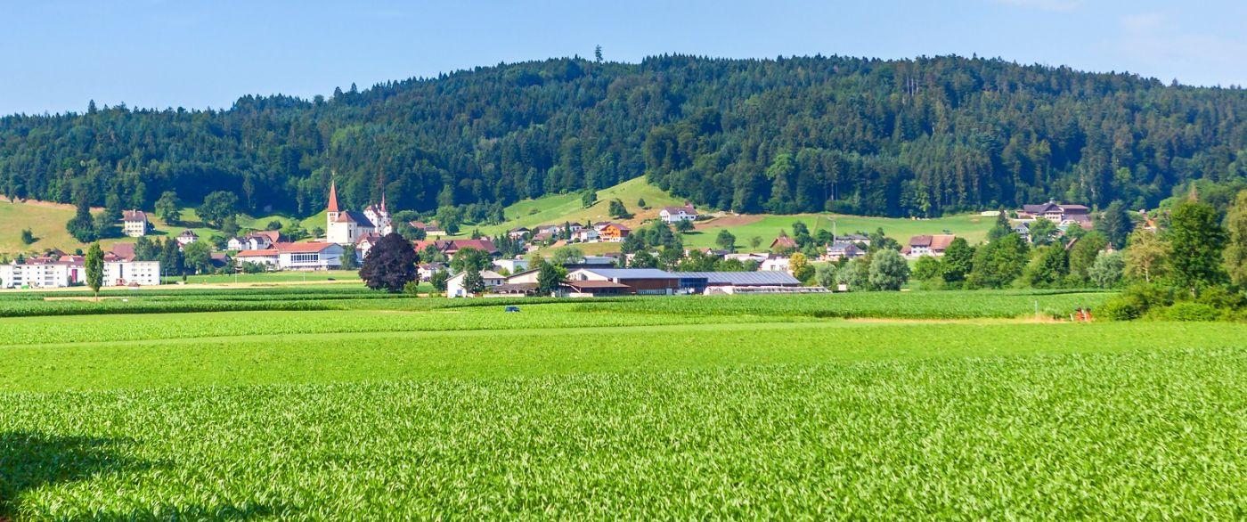 瑞士旅途,美丽的家园_图1-4
