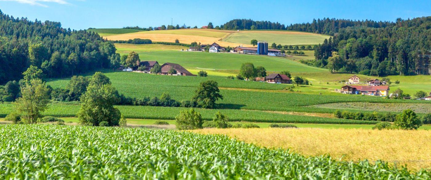 瑞士旅途,美丽的家园_图1-1
