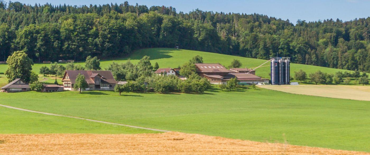 瑞士旅途,美丽的家园_图1-2