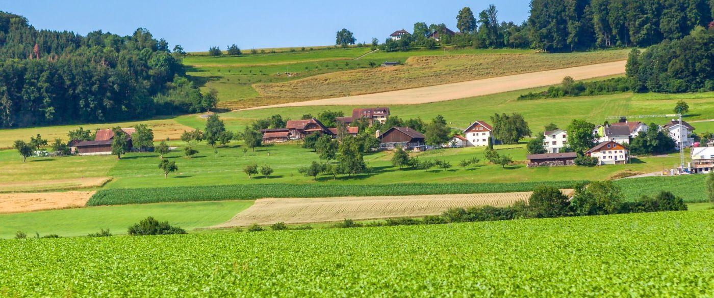 瑞士旅途,美丽的家园_图1-5