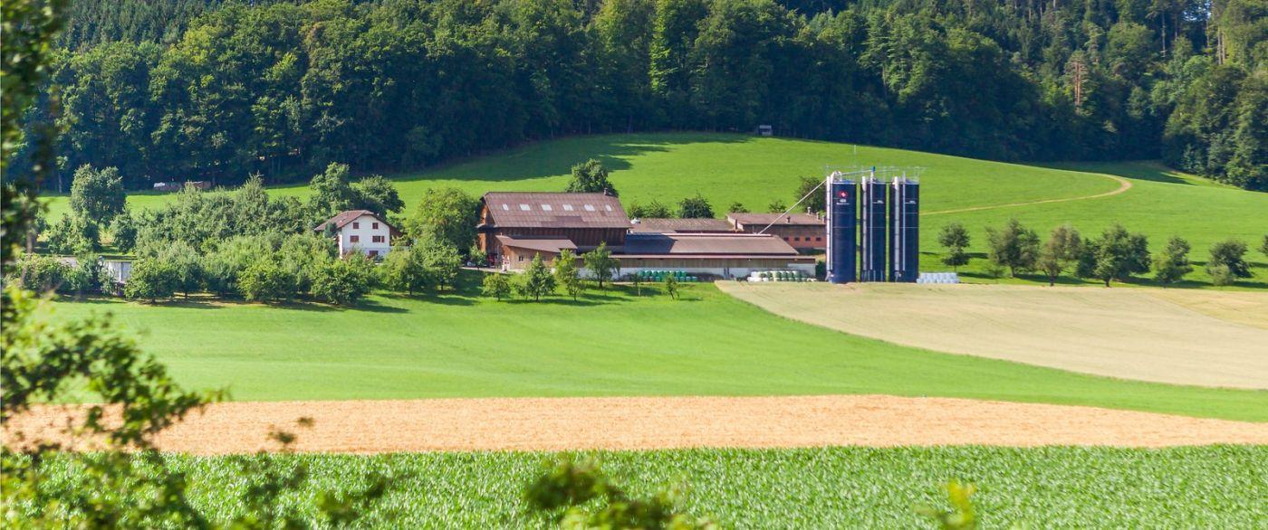 瑞士旅途,美丽的家园_图1-6