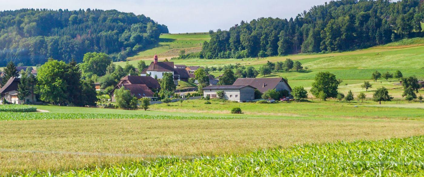 瑞士旅途,美丽的家园_图1-8