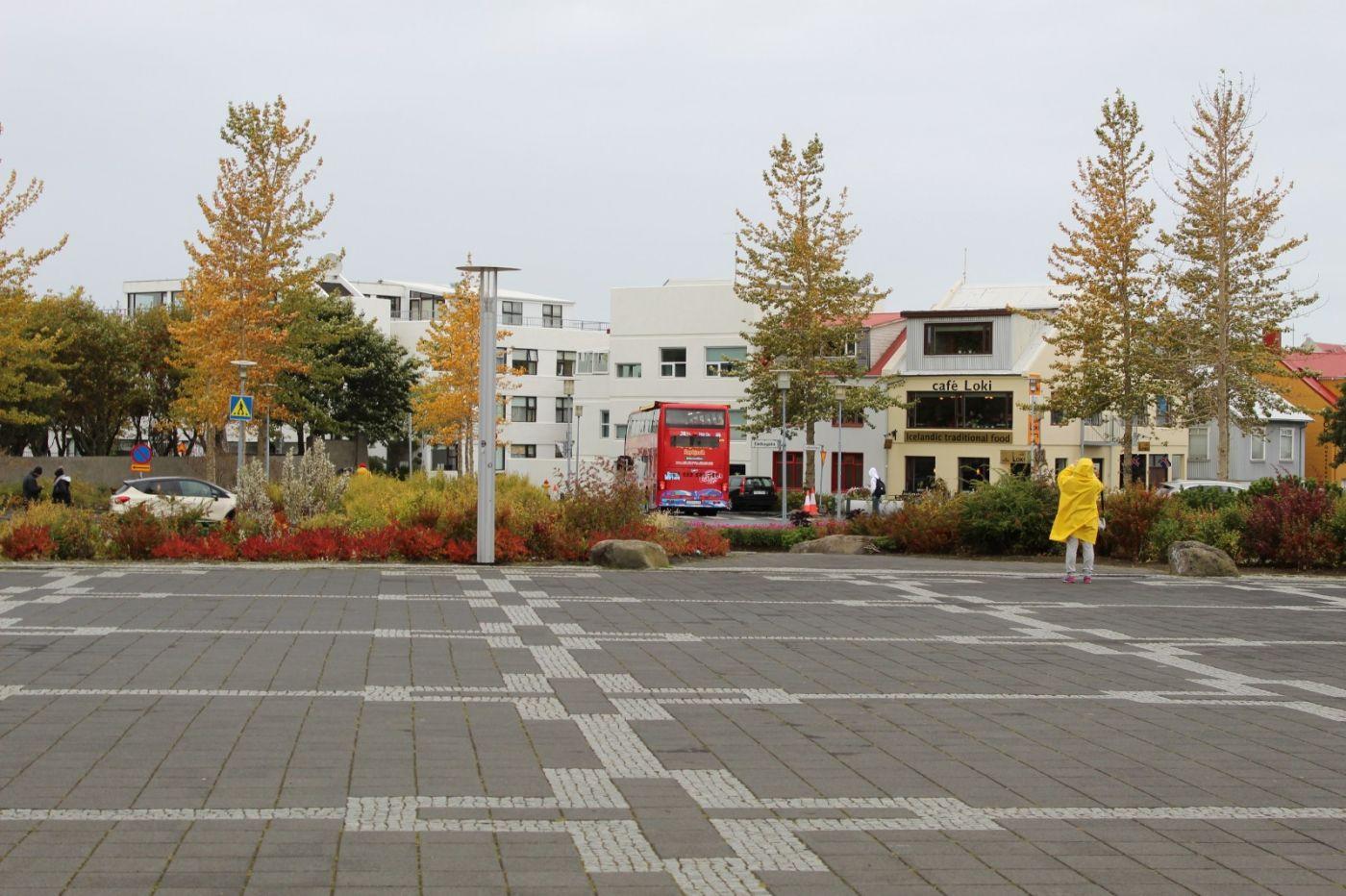 冰岛首都雷克雅未克_图1-38