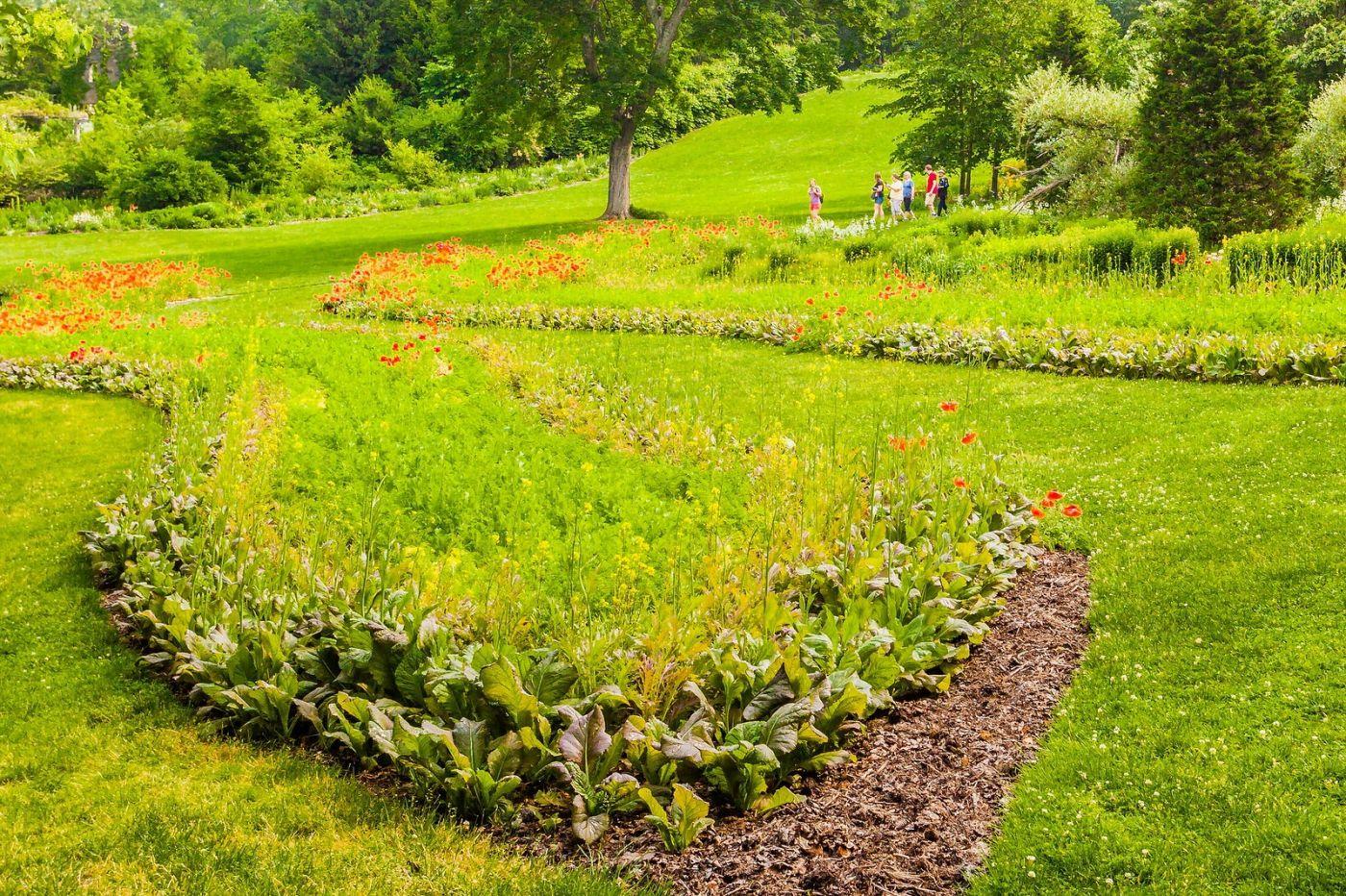 Chanticleer花园,融入自然_图1-8
