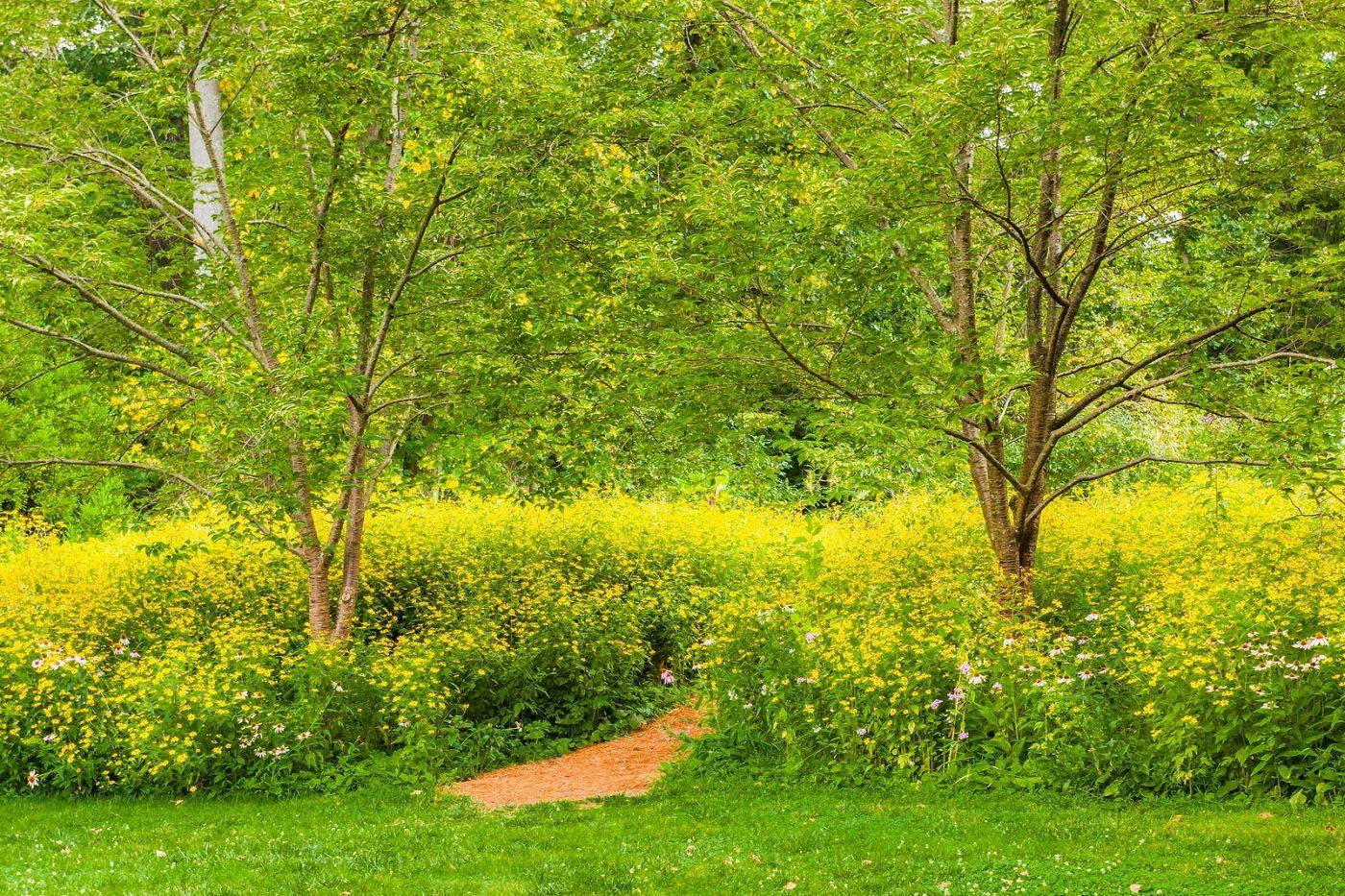 Chanticleer花园,融入自然_图1-3
