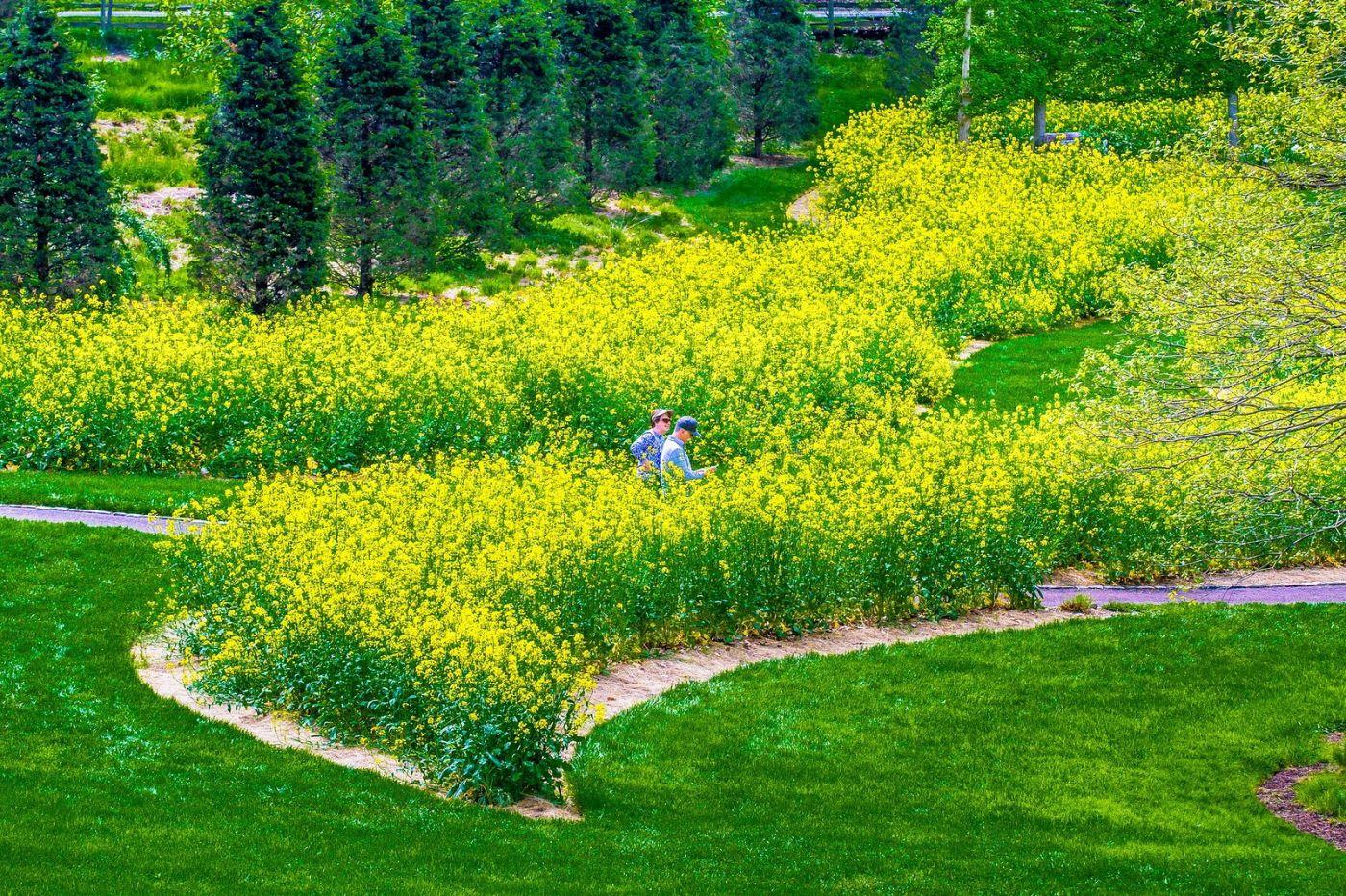 Chanticleer花园,融入自然_图1-1