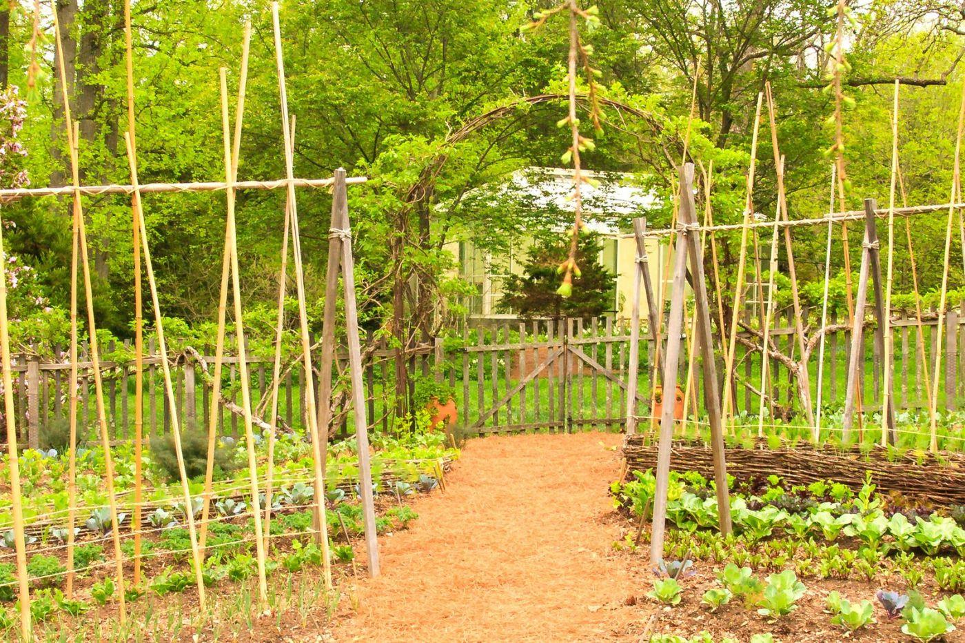 Chanticleer花园,融入自然_图1-2