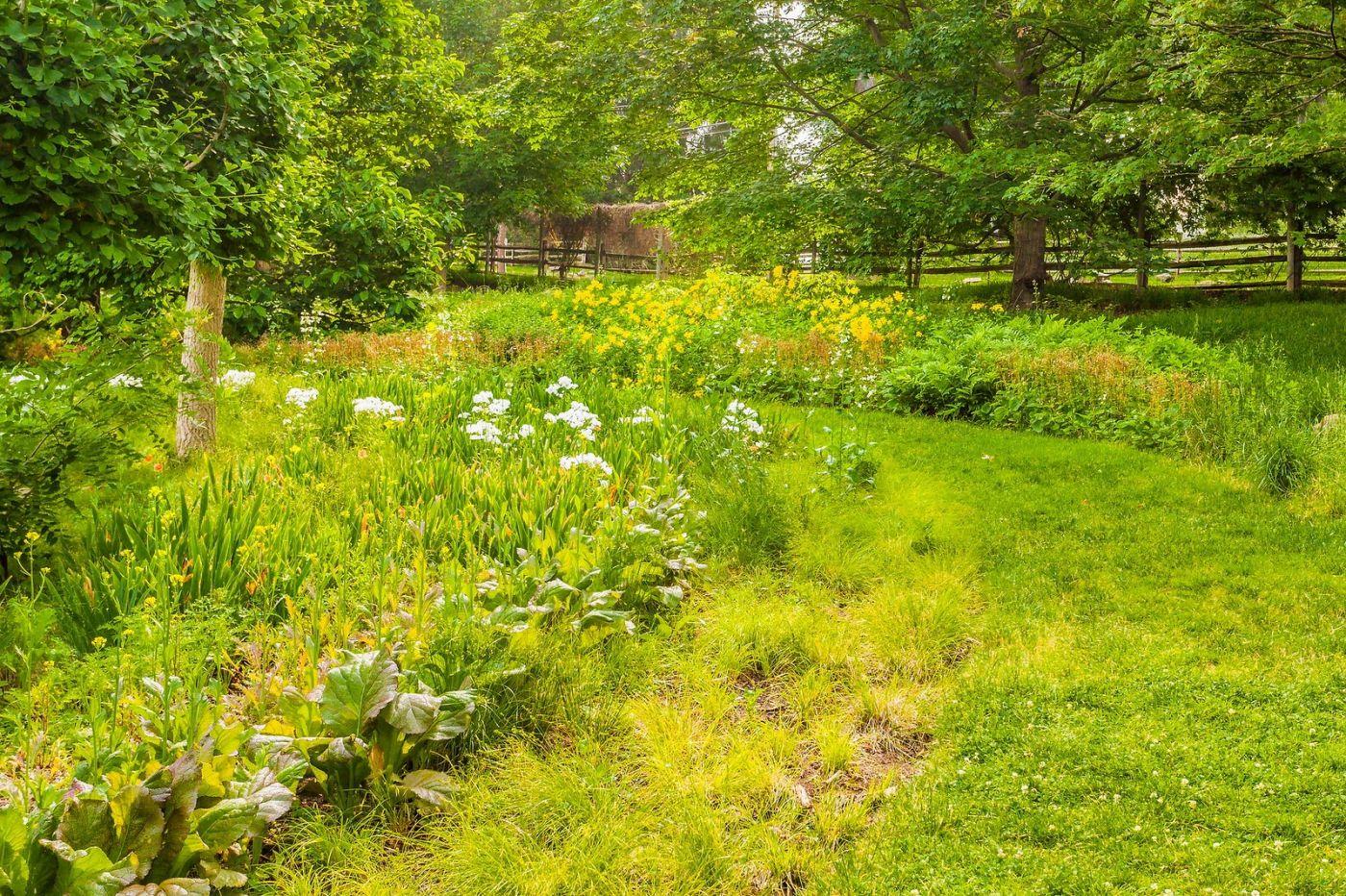 Chanticleer花园,融入自然_图1-13