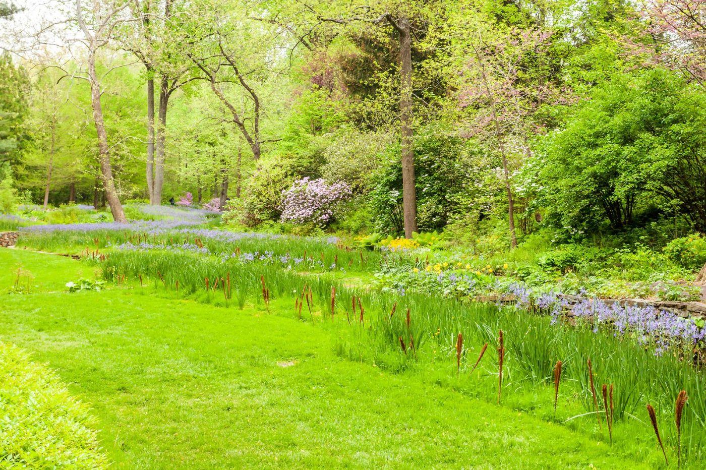 Chanticleer花园,融入自然_图1-15