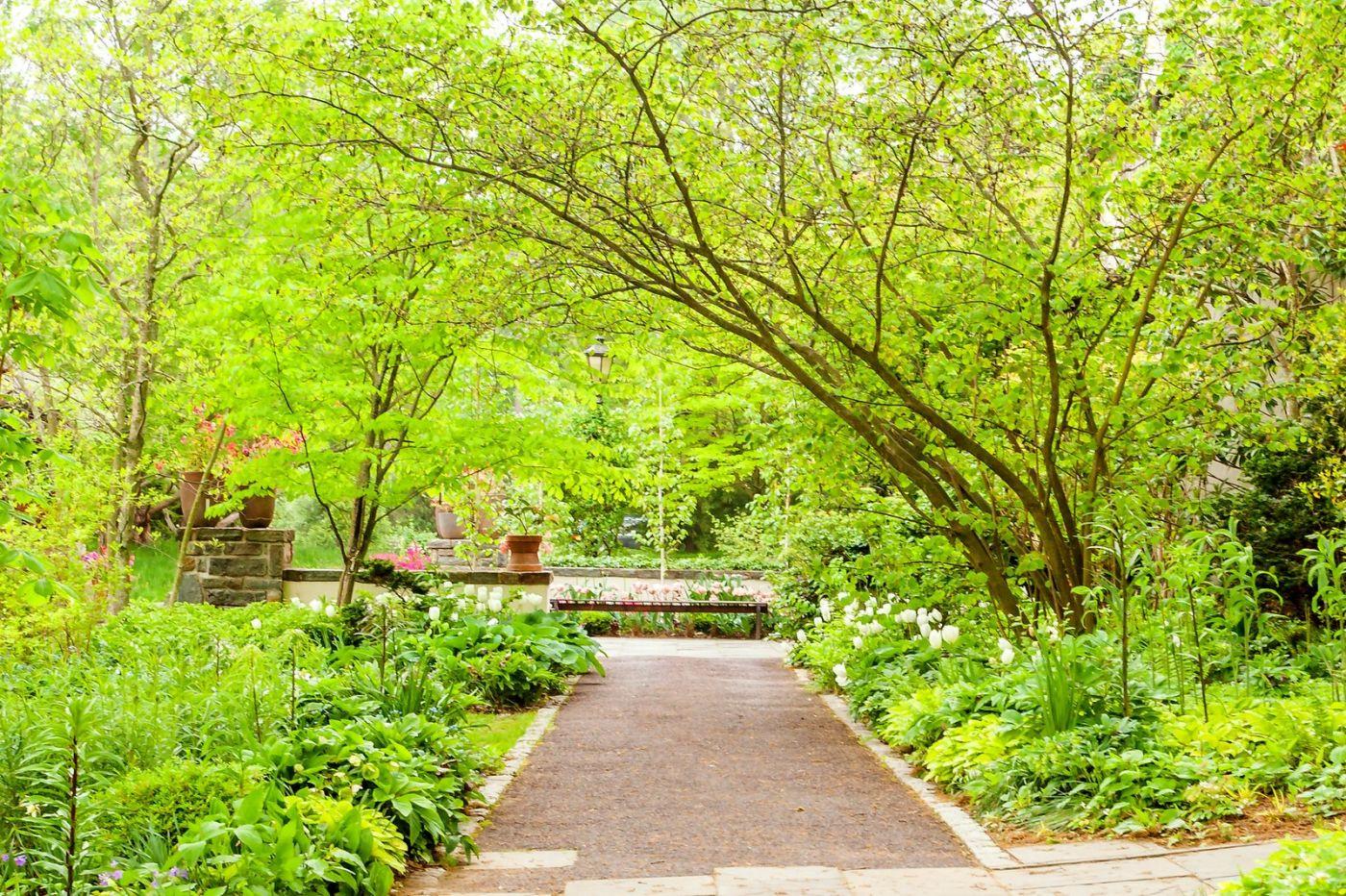 Chanticleer花园,融入自然_图1-19