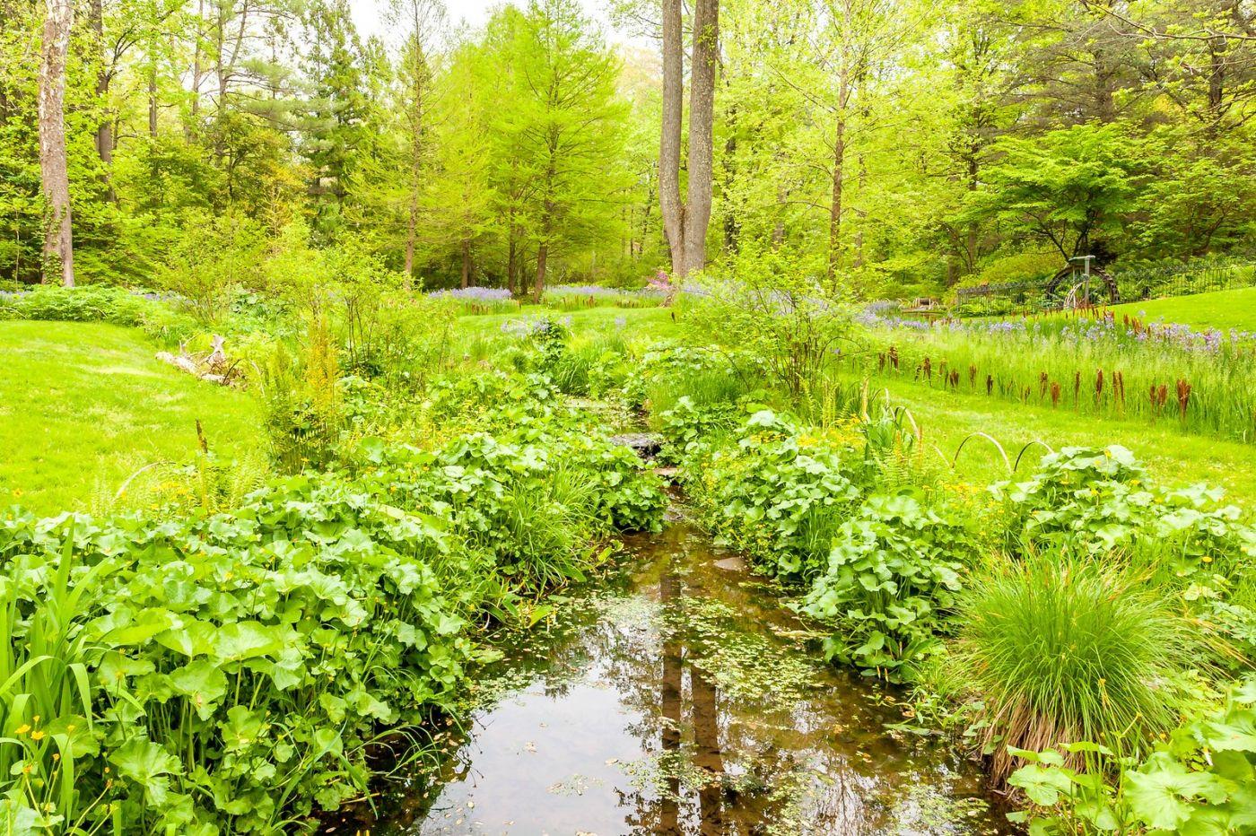 Chanticleer花园,融入自然_图1-21