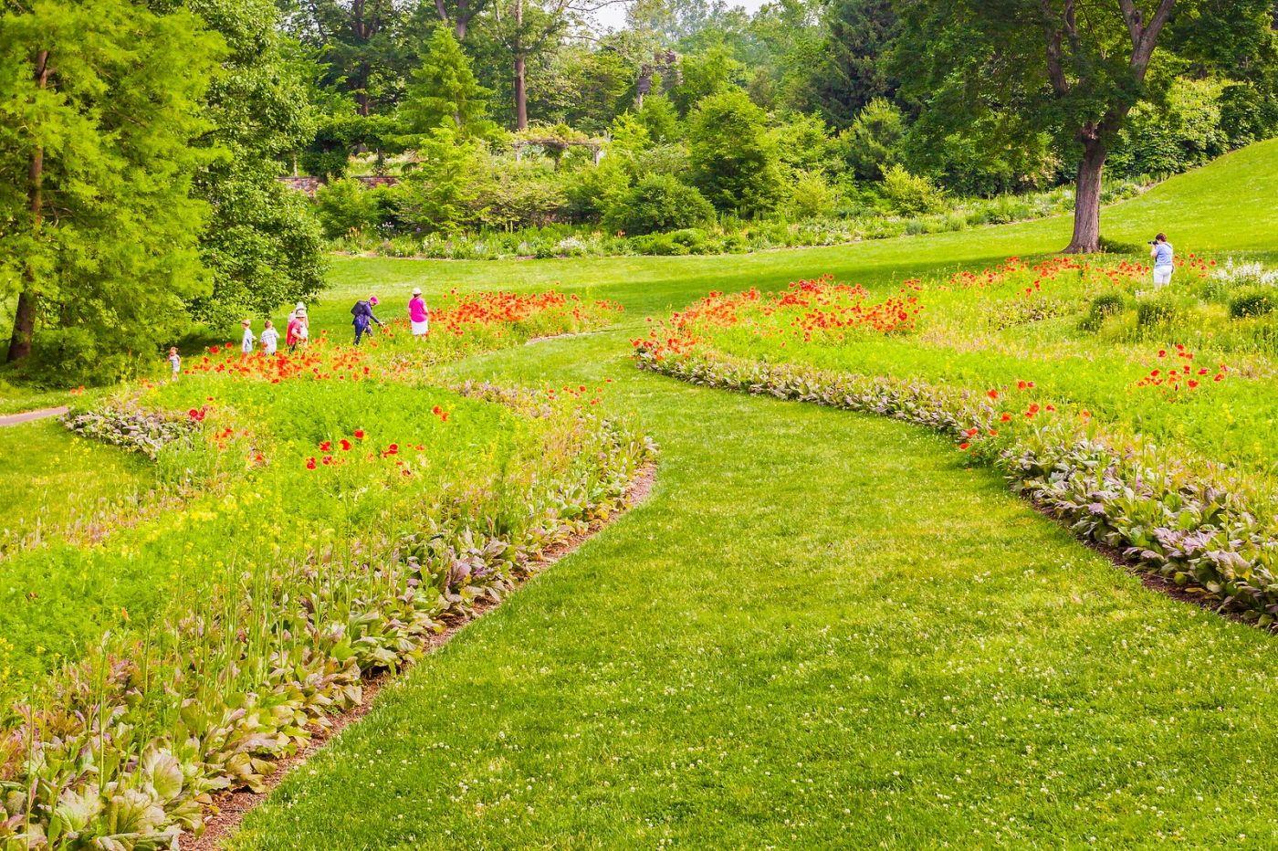 Chanticleer花园,融入自然_图1-17