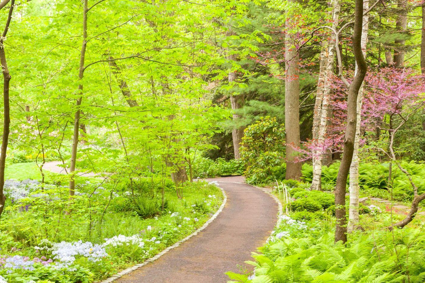 Chanticleer花园,融入自然_图1-22