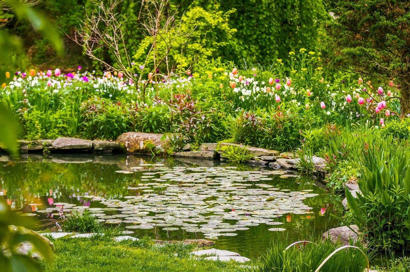 Chanticleer花园,融入自然_图1-23