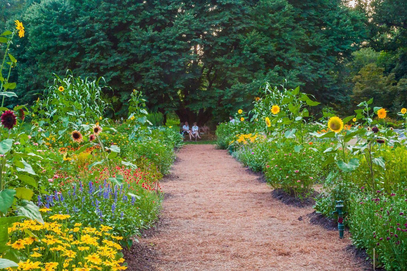 Chanticleer花园,融入自然_图1-24