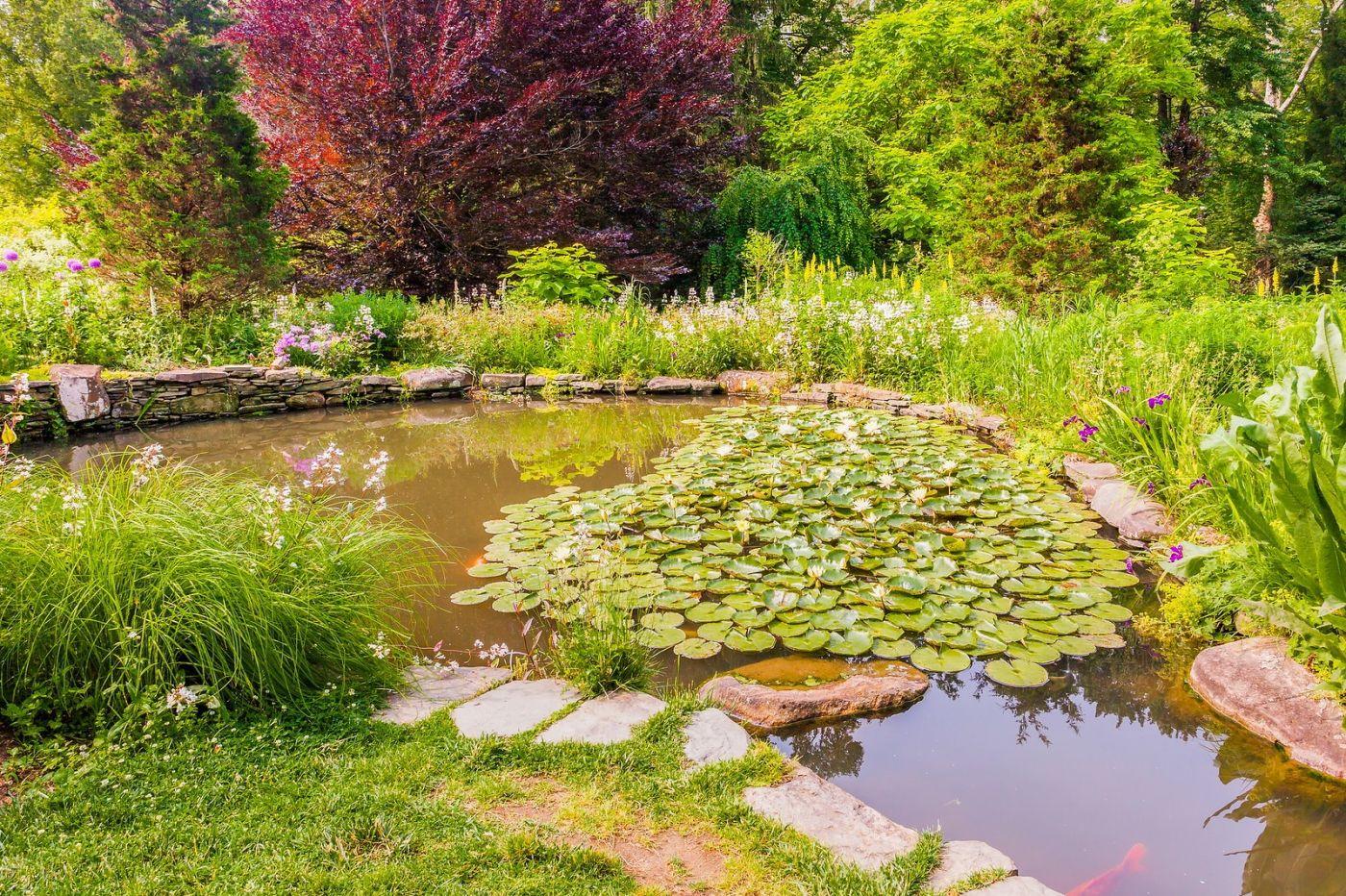 Chanticleer花园,融入自然_图1-27