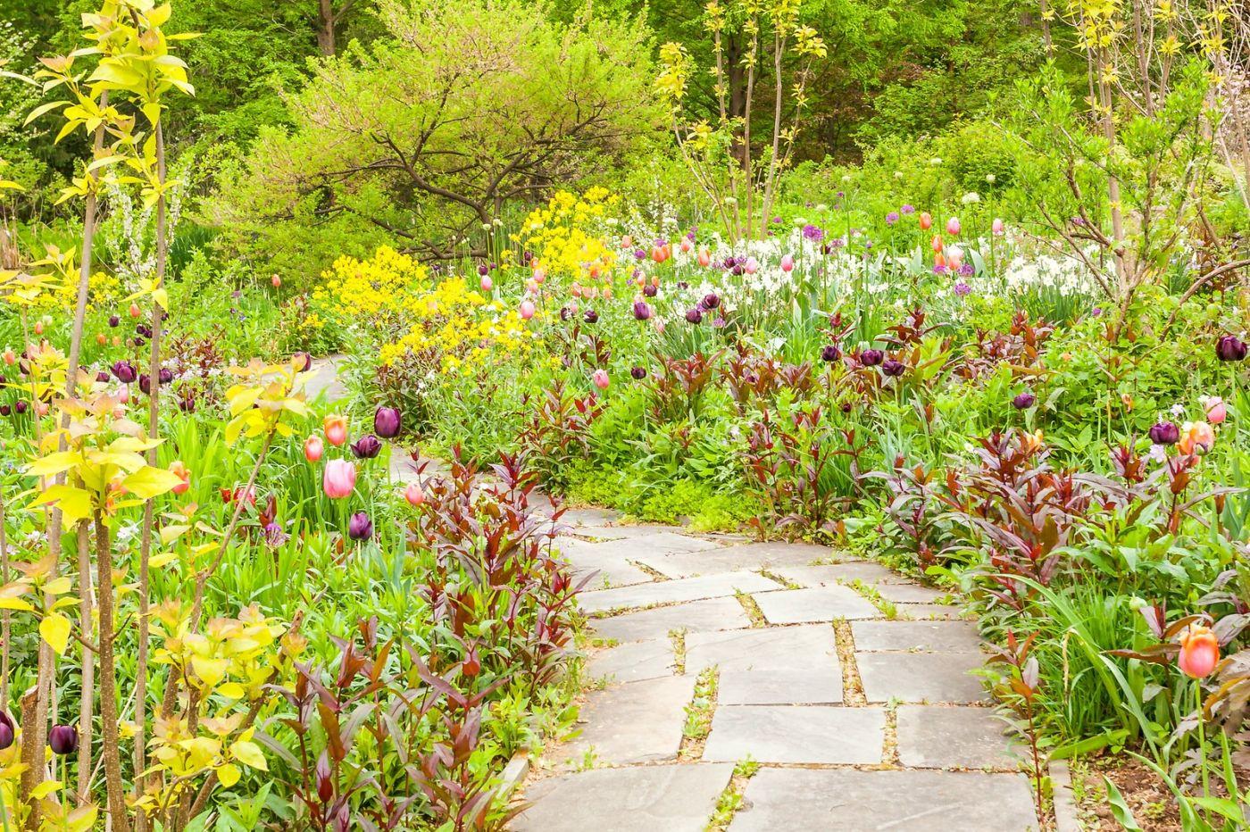 Chanticleer花园,融入自然_图1-29
