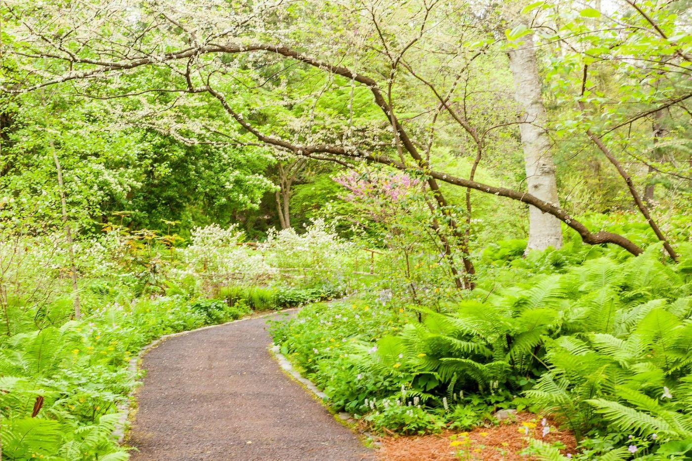 Chanticleer花园,融入自然_图1-25