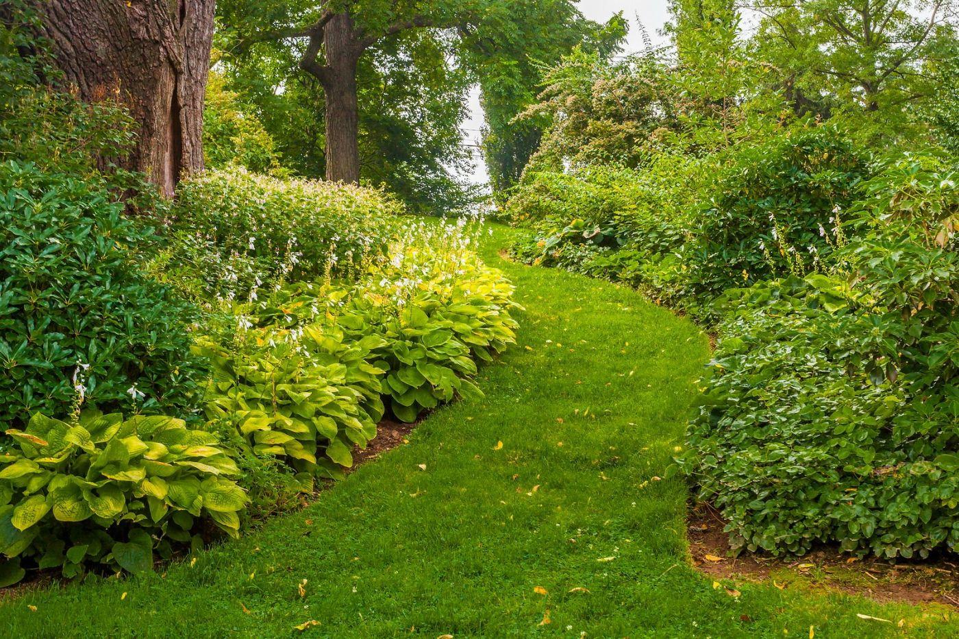 Chanticleer花园,融入自然_图1-30