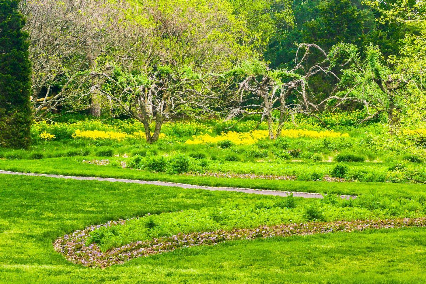 Chanticleer花园,融入自然_图1-36
