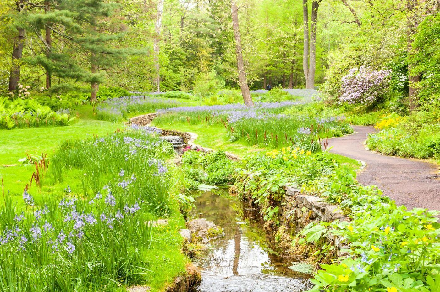 Chanticleer花园,融入自然_图1-35