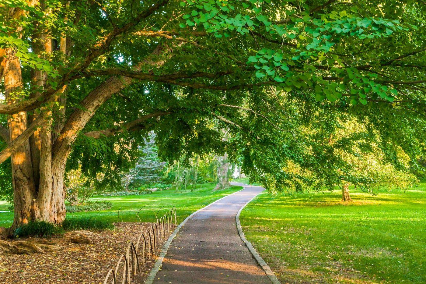 Chanticleer花园,融入自然_图1-34