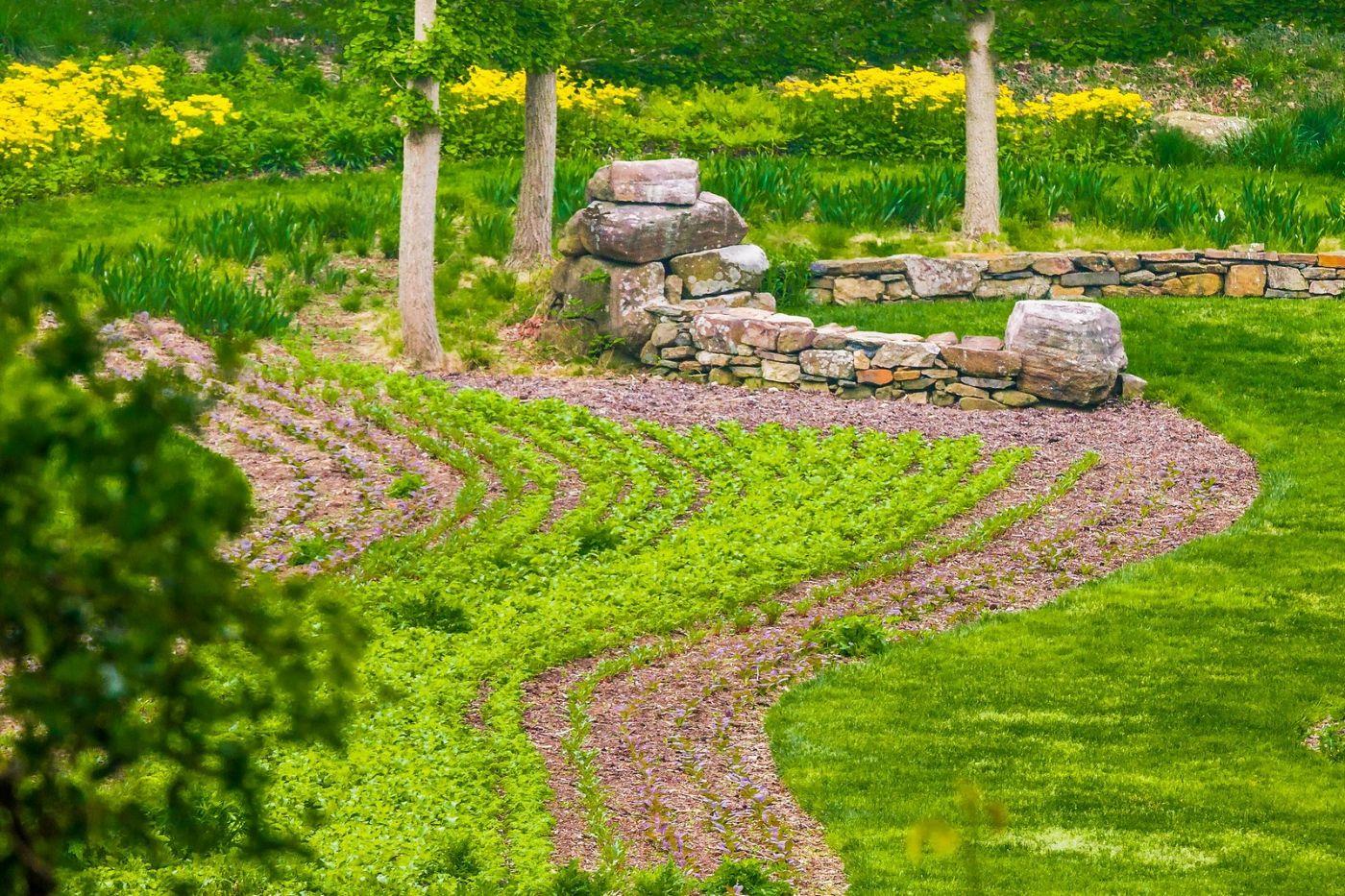 Chanticleer花园,融入自然_图1-33