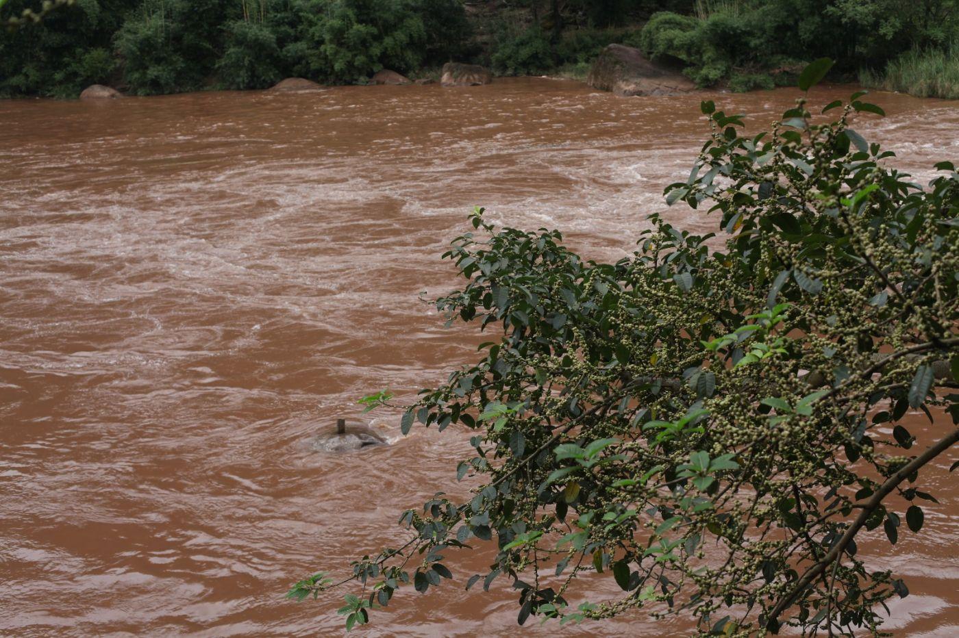 孕育了天赐尤物茅台酒的山野、林莽、溪流和河水那个空间_图1-3