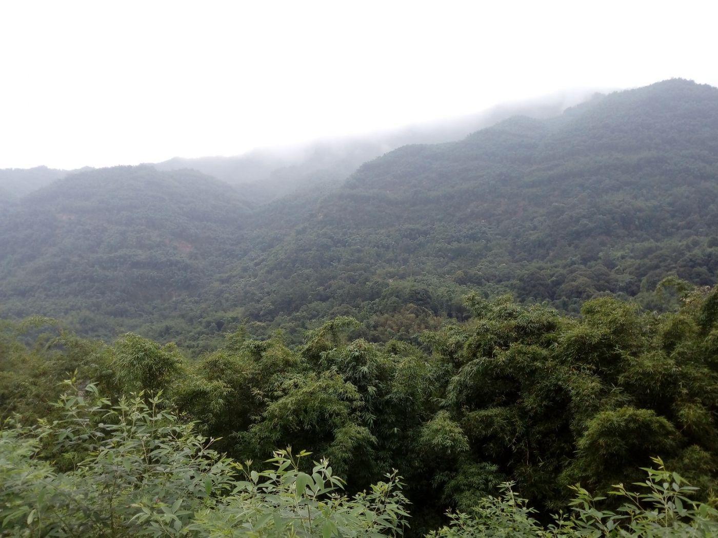 孕育了天赐尤物茅台酒的山野、林莽、溪流和河水那个空间_图1-8
