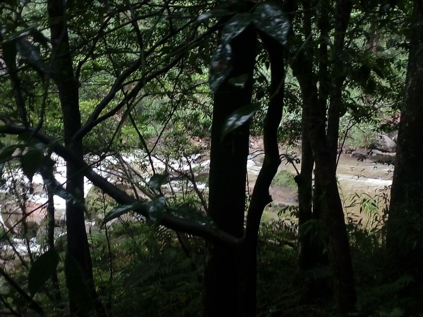 孕育了天赐尤物茅台酒的山野、林莽、溪流和河水那个空间_图1-10