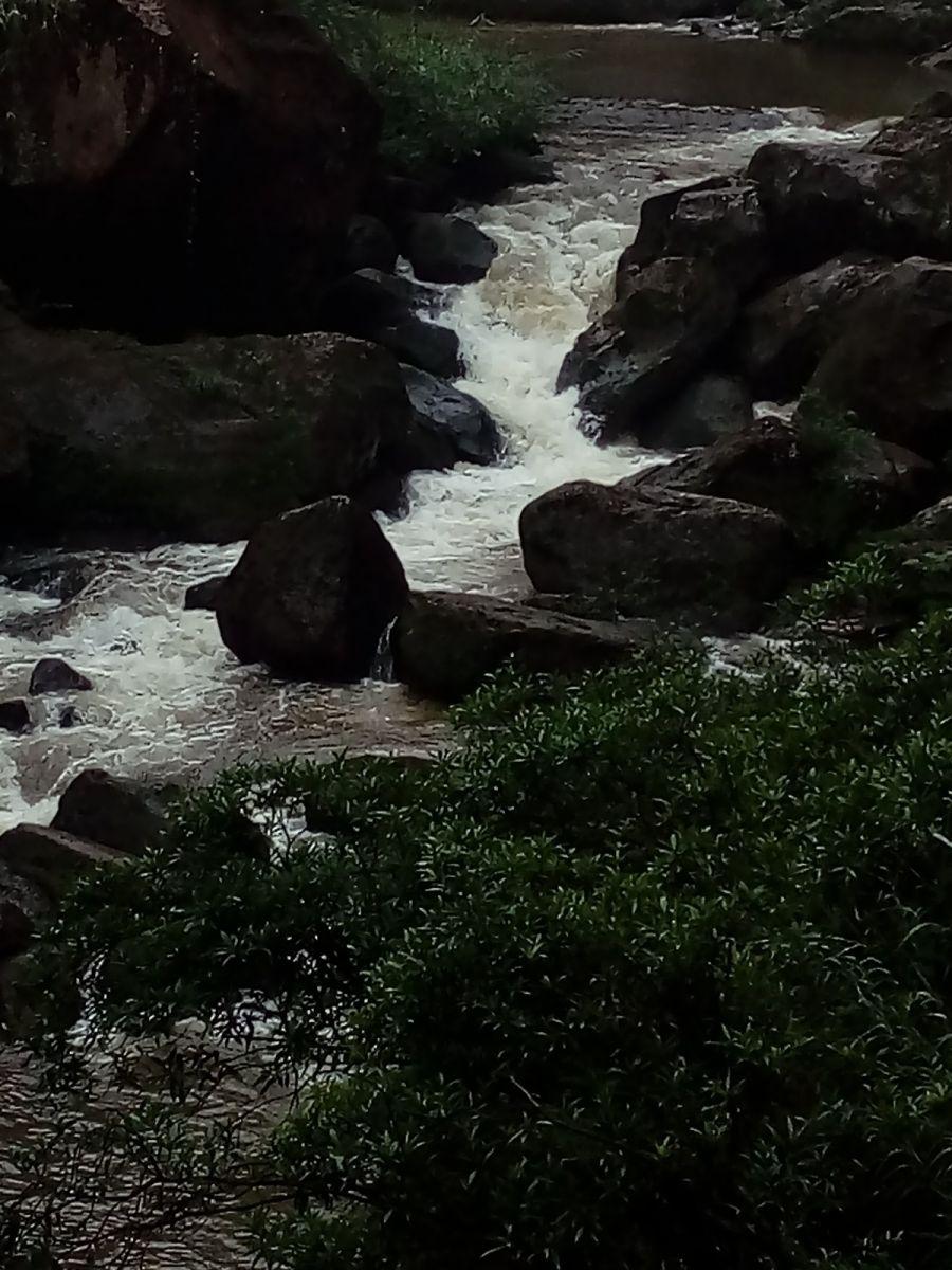 孕育了天赐尤物茅台酒的山野、林莽、溪流和河水那个空间_图1-15