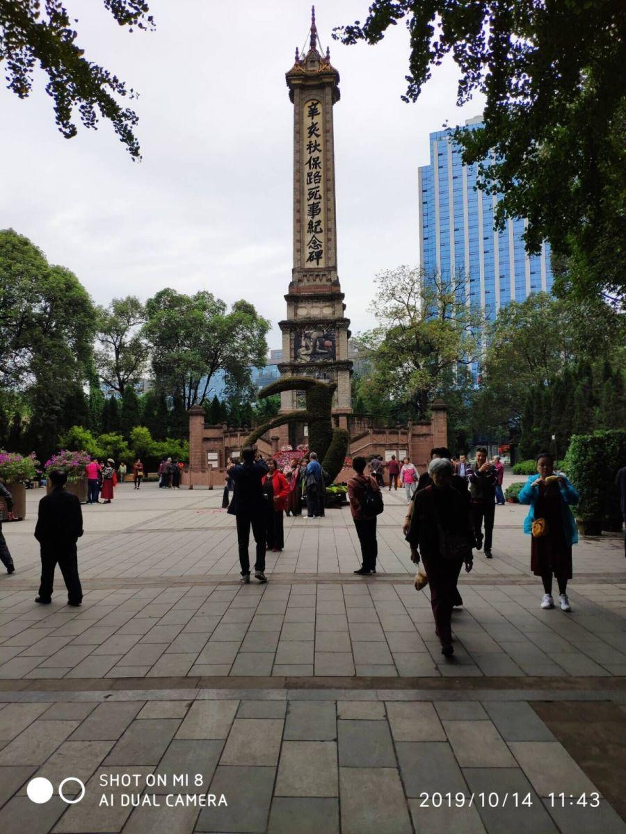 今天,被记者骗到人民公园看芙蓉花_图1-2