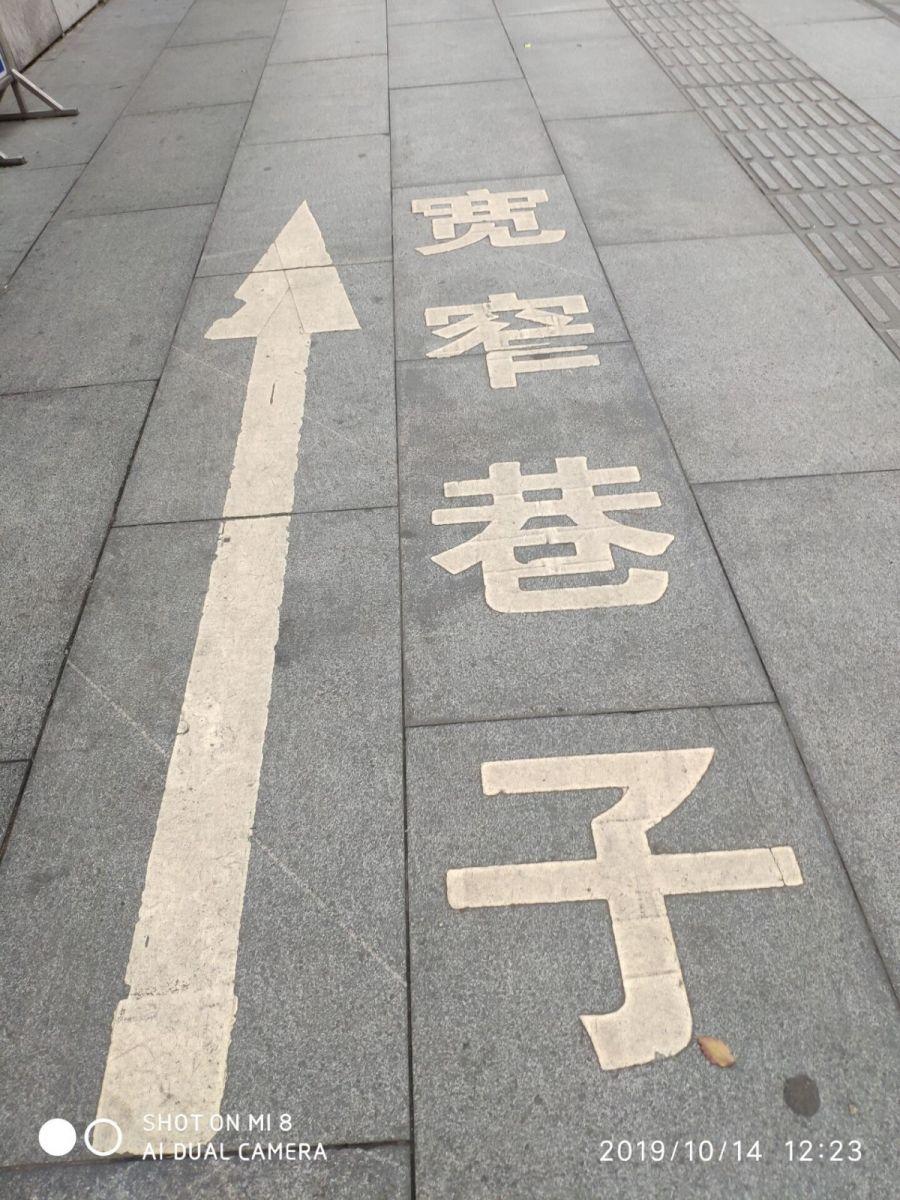 今天,被记者骗到人民公园看芙蓉花_图1-17