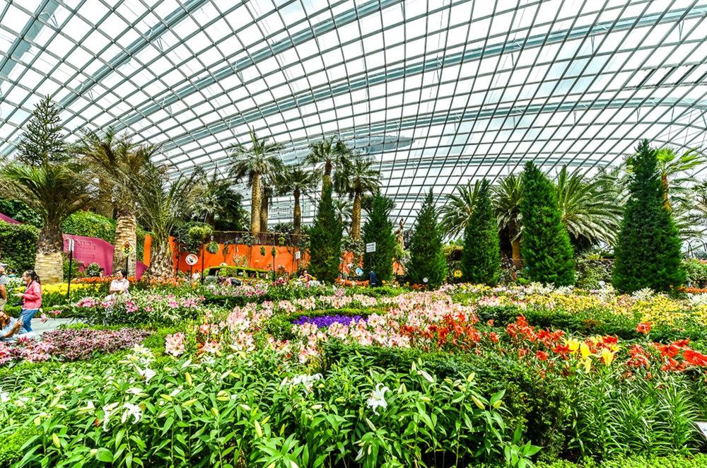 滨海湾花园与花穹---2_图1-2
