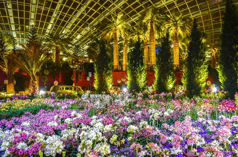 滨海湾花园与花穹---2_图1-20